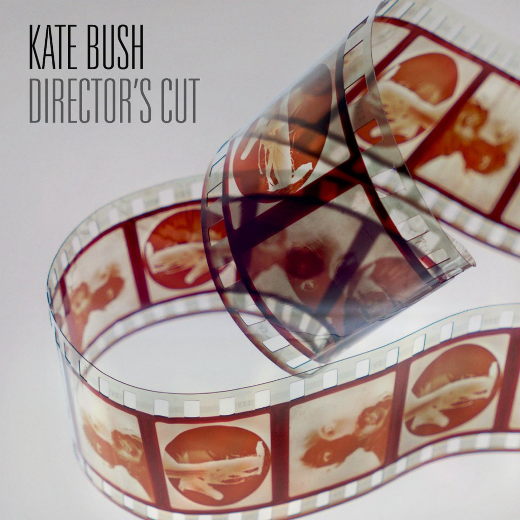 Kate Bush Director's Cut Cover