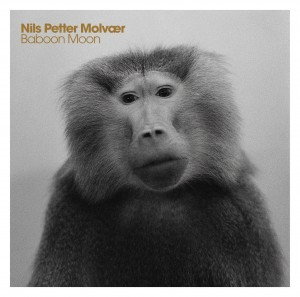 Nils Petter Molvaer Baboon Moon CD Cover